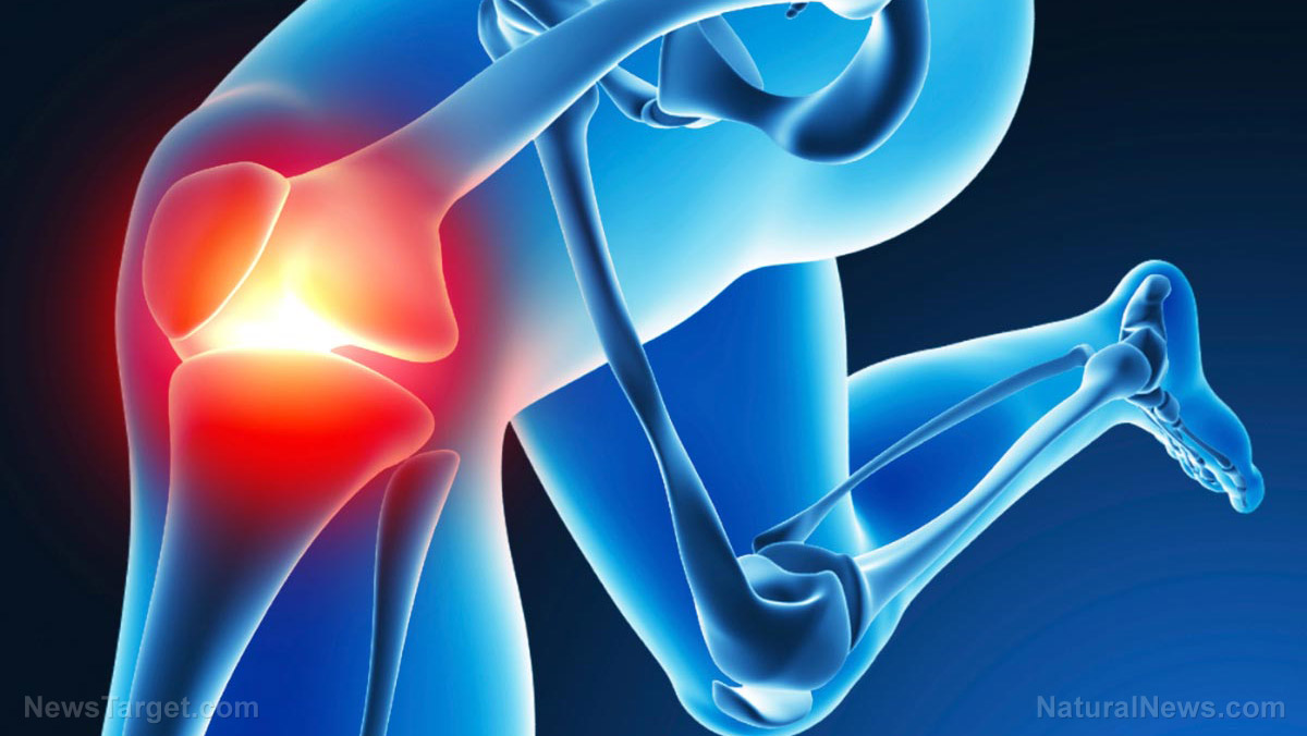 Fake knee surgery study